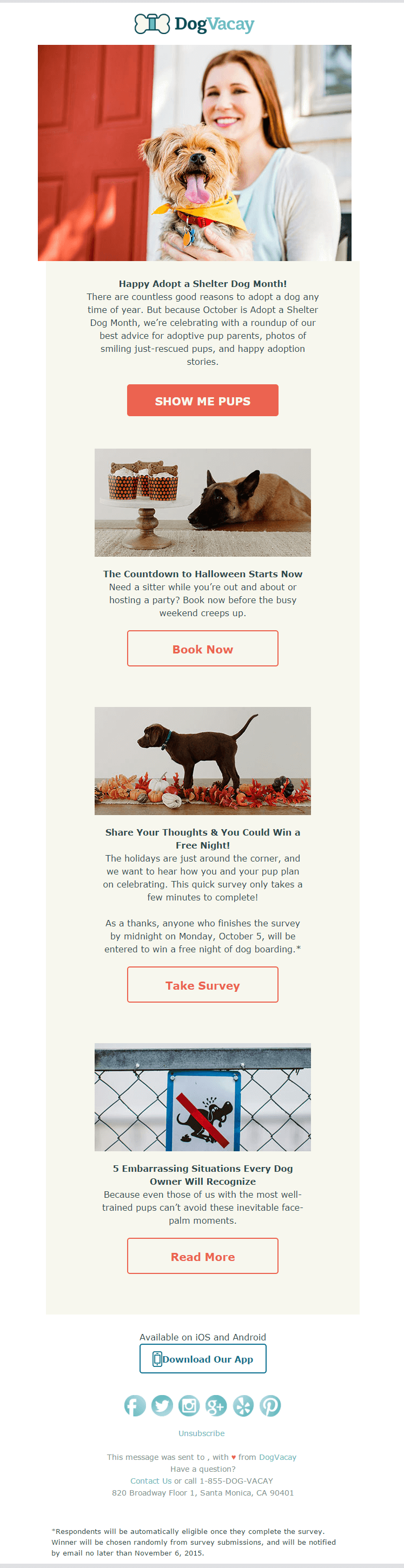 Email inspiration- Dogvacay (Shared Economy space)