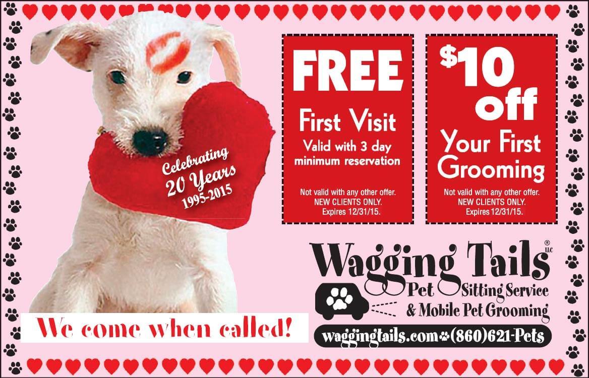 pet-valentine's day