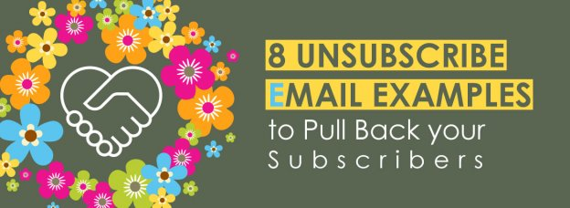 Unsubscribe Email-Large