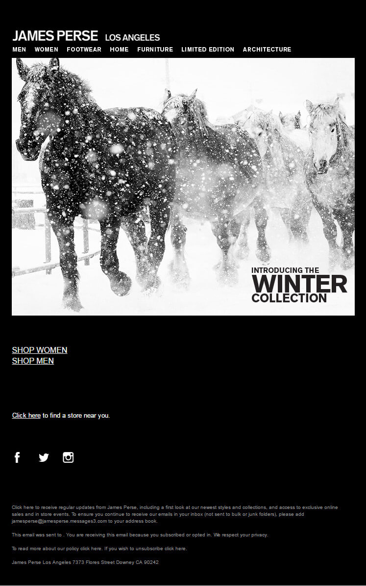 Seasonal Email Templates_James-Perse_Winter-Collection
