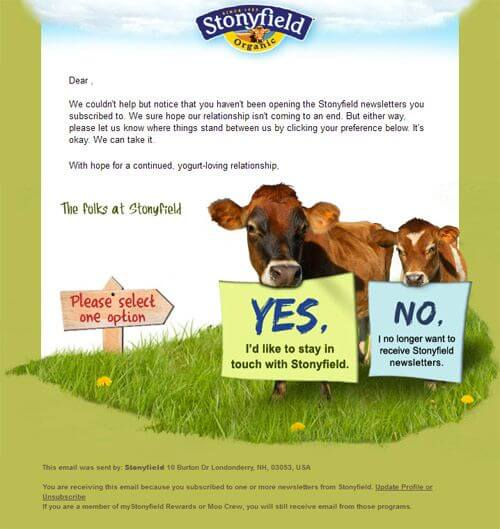Email list cleaning example- Stonyfield