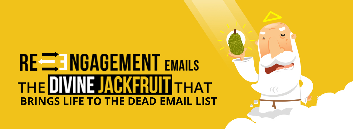 re-engagement email campaign resources - divine infographic emailmonks